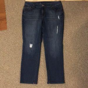 EUC Lane Bryant Genius Fit Straight Leg Jeans. 20P